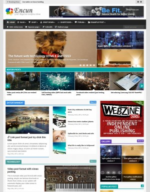 Encun brilliant magazine wordpress theme untuk IM