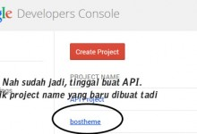 google api key baru bostheme