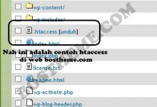 htaccess cpanel